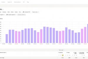 Wykres Yandex Metrica