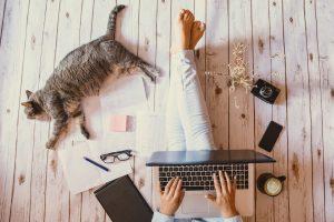 O czym pisać i jak zacząć zarabiać na blogu – performance360.pl