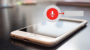 voice search i voice commerce